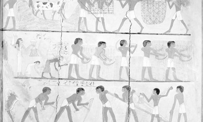Pintura egípcia no túmulo de Unsou mostra trabalho de agricultores