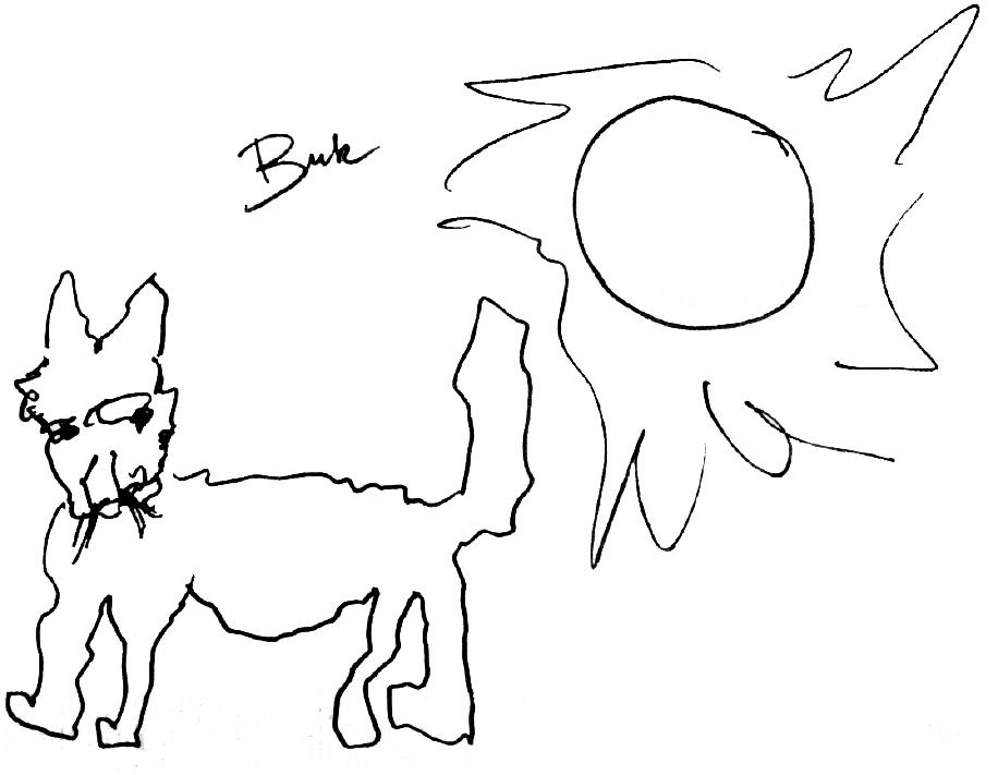 Bukowski-desenho-gato-1966